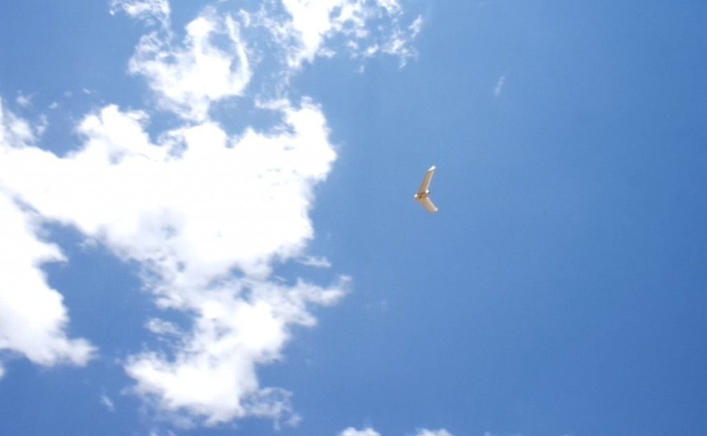 Bateleur UAV in the skies